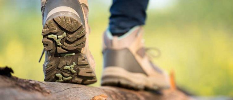 Learn more about how to identify Lyme Disease