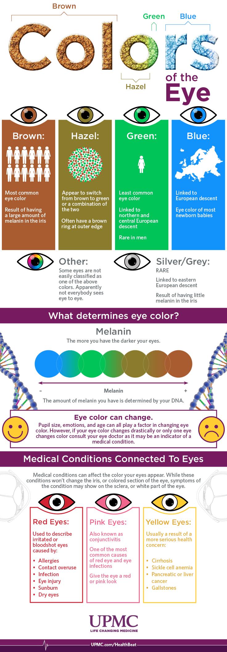 Infographic Eye Color Breakdown Guide Upmc Healthbeat