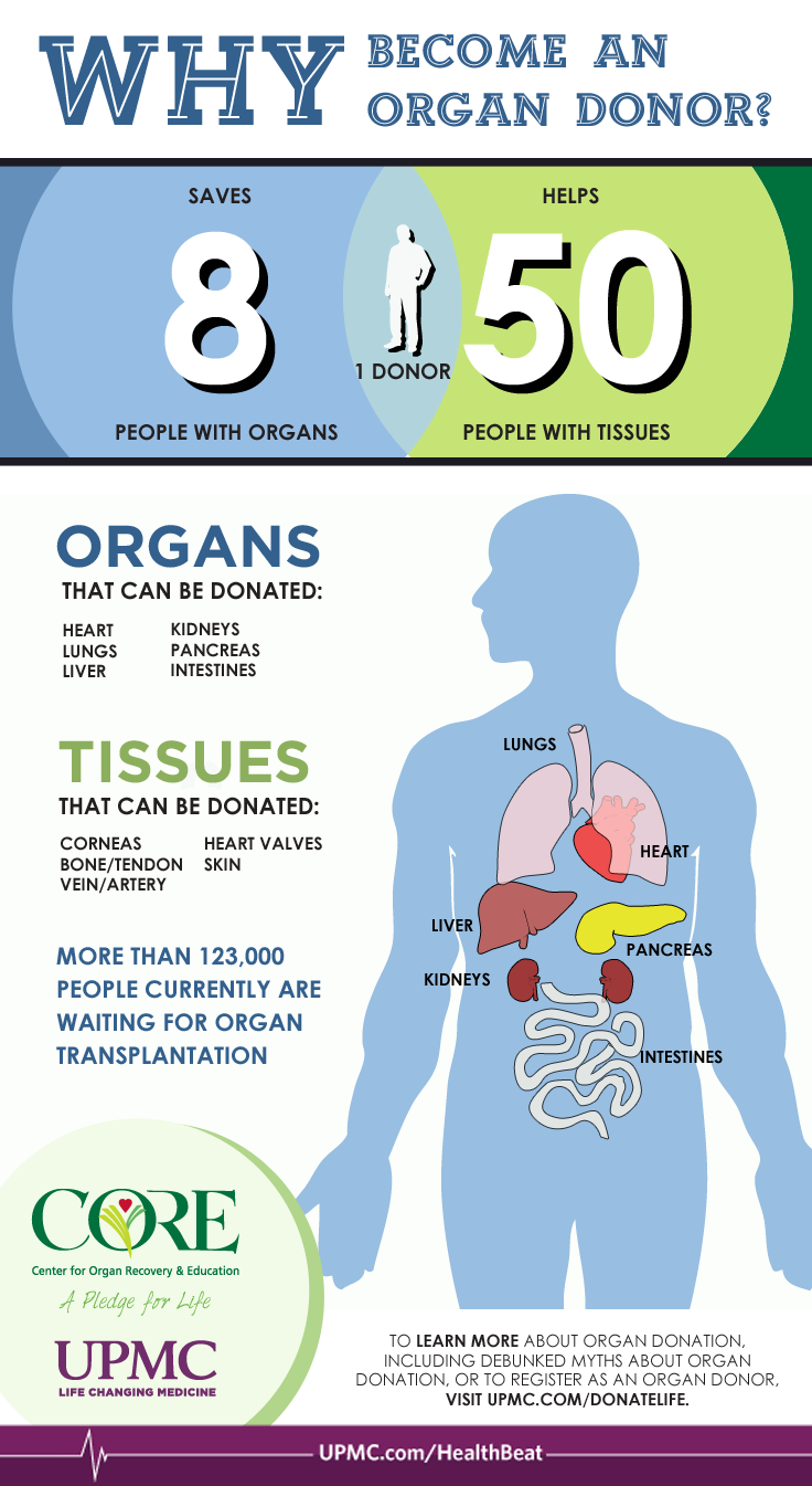 How Many Lives Can One Organ Donor Affect? | UPMC HealthBeat