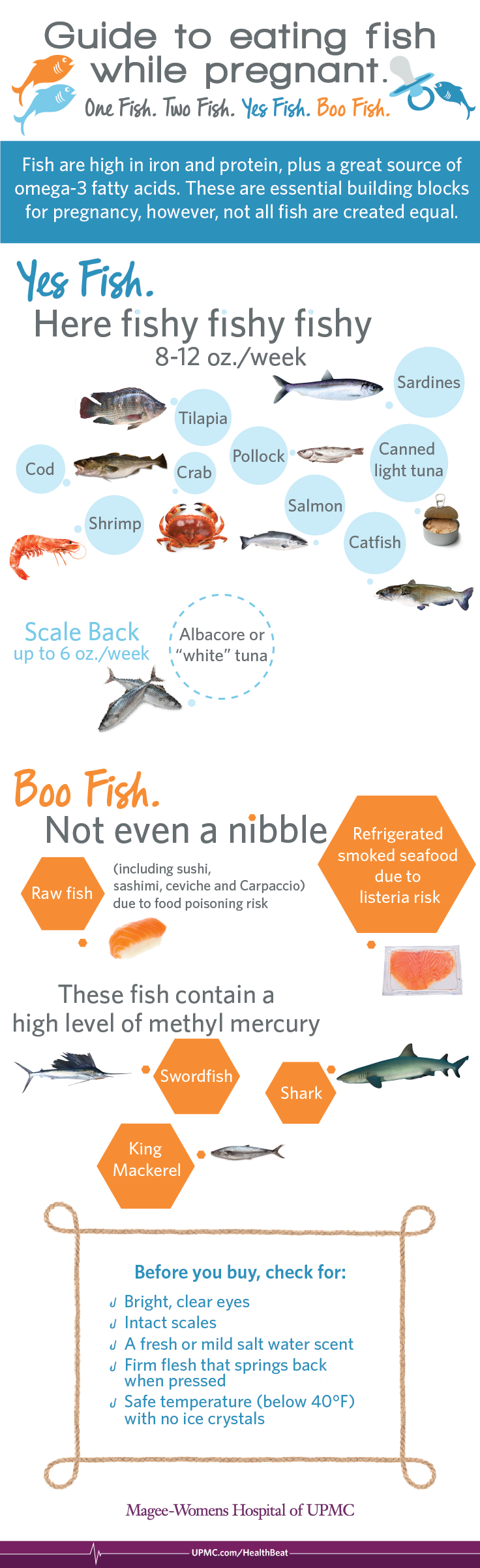 Learn which fish is safe to eat during your pregnancy.
