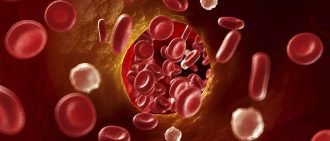 Cholesterol Basics: What You Need to Know