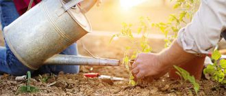 5 Tips for Gardening Safely