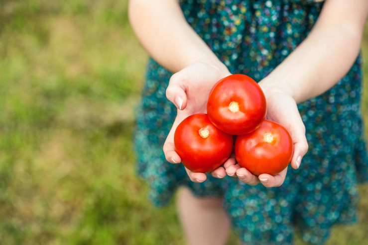 Tomatoes and a healthy diet