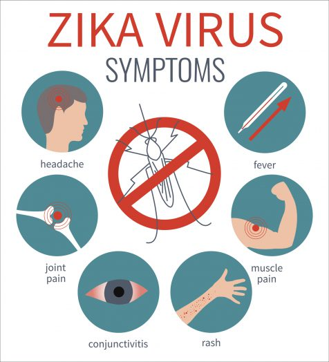 Learn about common Zika virus symptoms