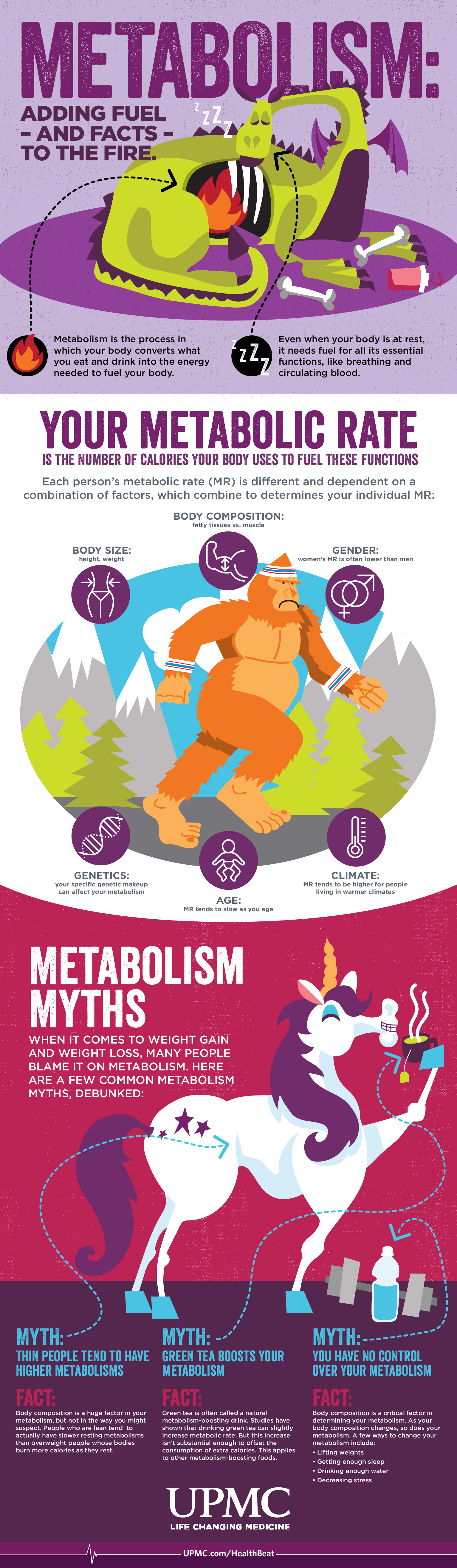 Learn more about how your metabolism functions