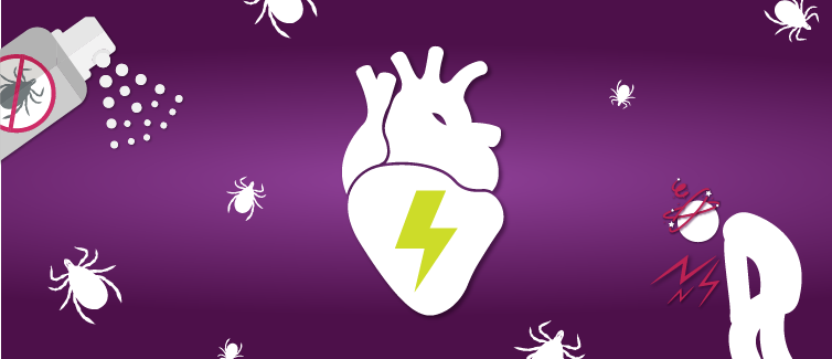 Learn more about Lyme carditis