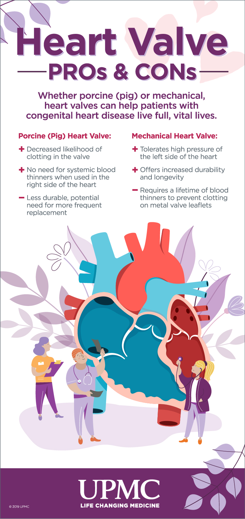 Learn more about heart valve transplant options.